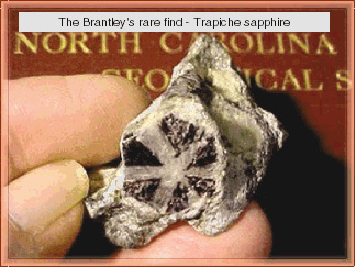 There are gems in them thar mountains - Brantley Article