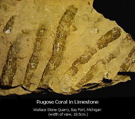Wallace Stone Quarry - Jim Adams - August 2009